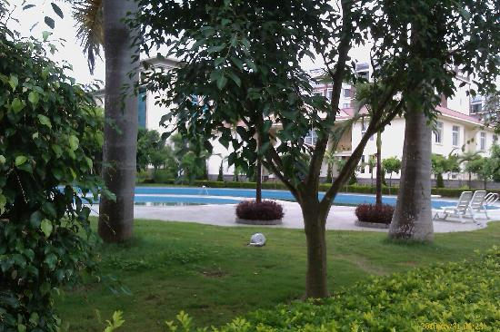 Sheng'andi Hotel : 院内绿树环绕的游泳池