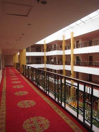 Botai Nyingchi Resort: 福建大酒店内部1