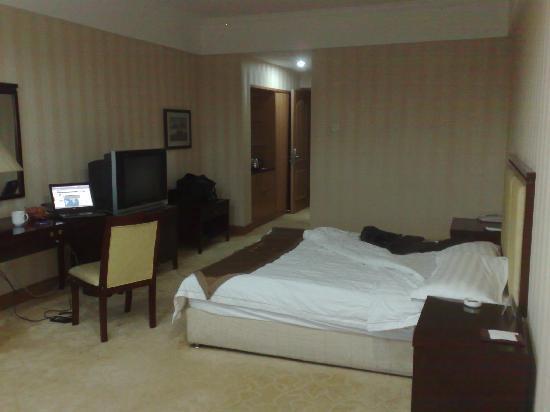 Haiyancheng Hotel: 房间1