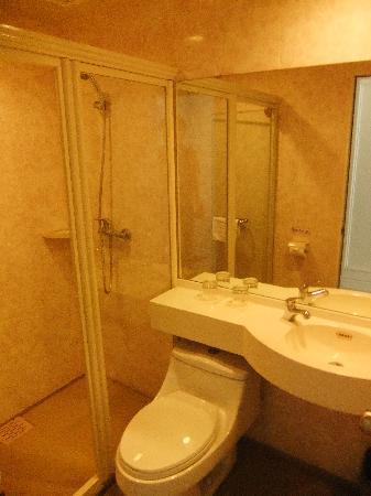 Oak Hotel (Chongqing Yicheng Guoji): 卫生间干净,但是蛮小。。