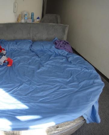 Motel 168 Beijing Zhongguancun: 大圆床,一家3口也可以躺
