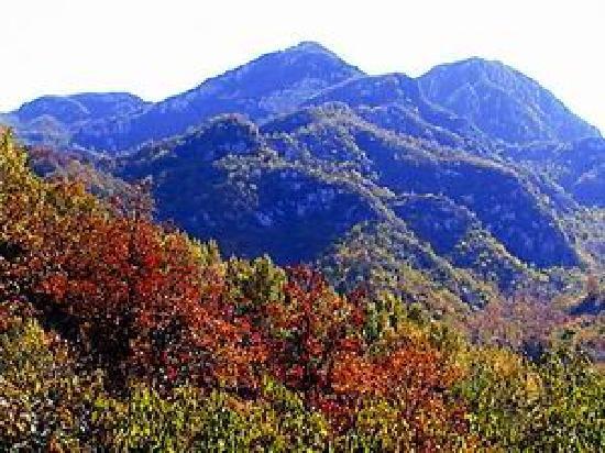 Natural Scenic Spots of Dayangshan