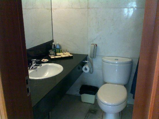 Xiangyang Hotel: 卫生间
