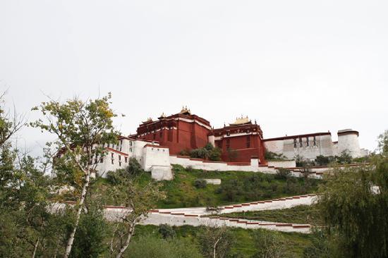 Minzheng Fuli Hotel: 走几步,就能看到布达拉宫的后面