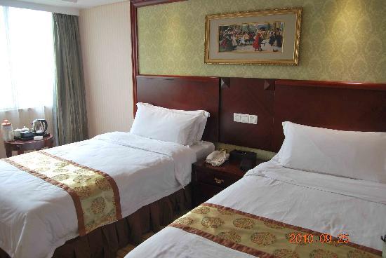 Vienna Hotel Guangzhou Sanyuanli: 房间