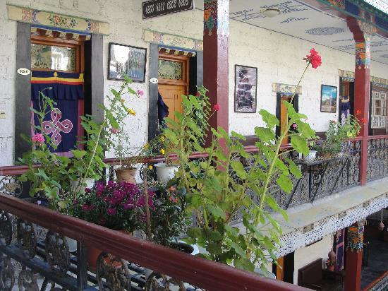 Tibet Gorkha Hotel : 院子里的花朵