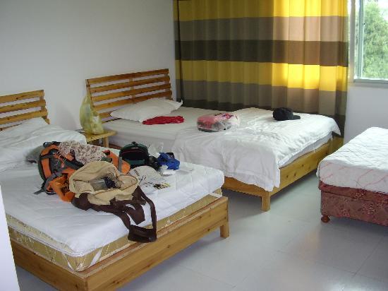 Migrant Bird House : 有些乱,但能看出房间很宽敞