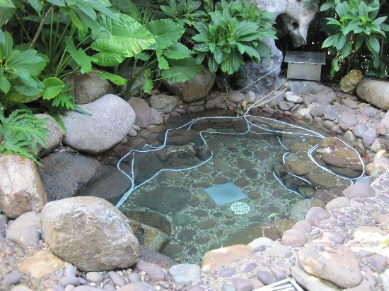 Jinhong Garden Hotspring Hotel : 温泉泡池