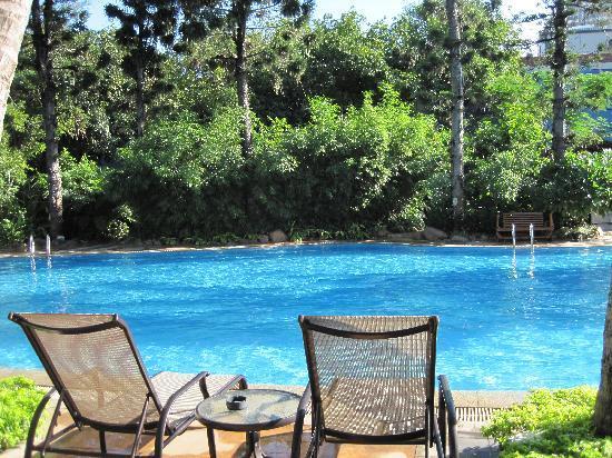 Jinhong Garden Hotspring Hotel : 泳池