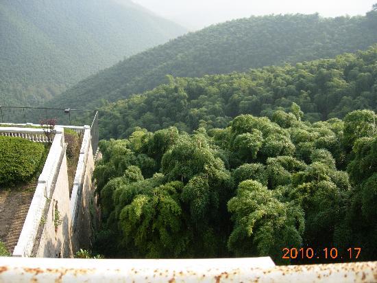 Moganshan Zhuxiangcun Hotel: DSCN0787
