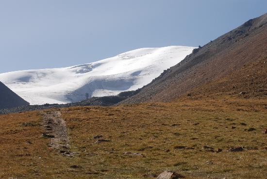 Qiyi Plateau Glacier : 美丽的冰川