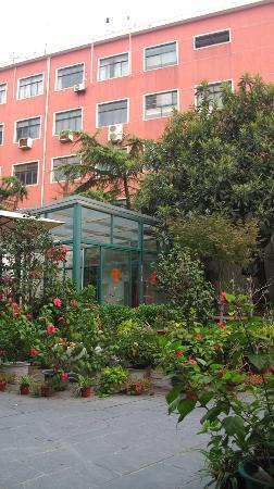 Hidden Garden International Youth Hostel: 都是花❀
