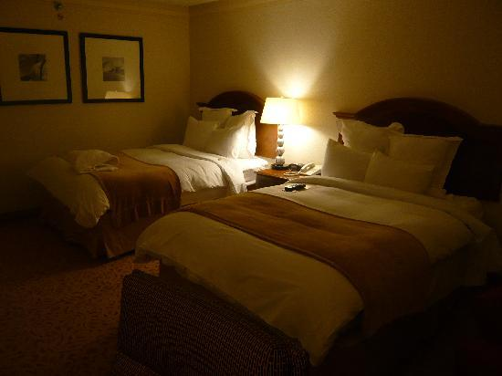 Washington Dulles Airport Marriott: 房间1
