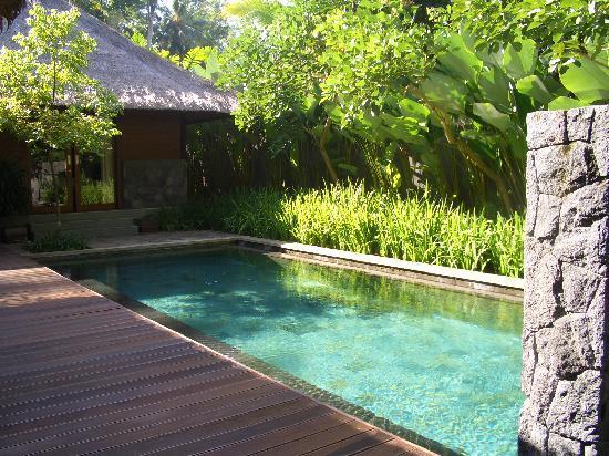 Kayumanis Ubud Private Villa & Spa: 乌布肉桂私人豪华villa的泳池