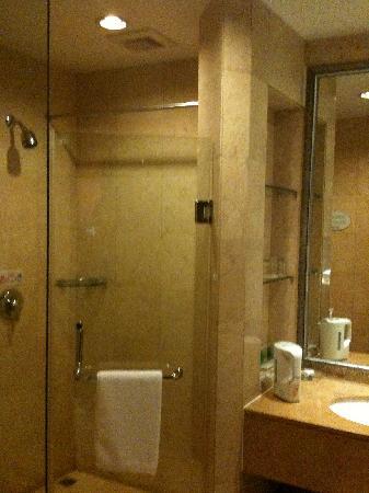 Shaoshan Hotel: 卫生間