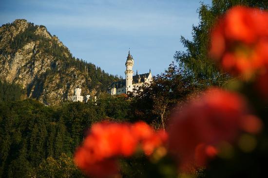 Romantic Pension Albrecht: 阳台上看到的新天鹅堡