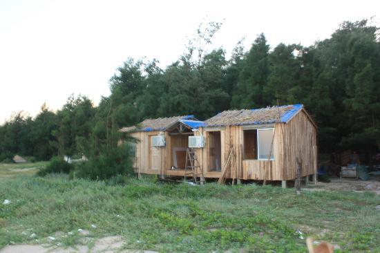 Bihai Sunshine Shell Sandbank