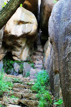 Daqingshan Quaternary Period Glacial Relic Park: IMG_2975