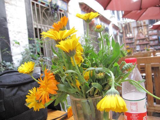 Gesang Huaxiang Hotel: 吃饭的地方的小花