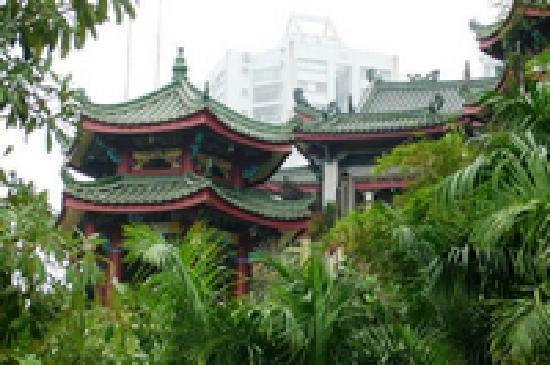 Hongshan Park : 鸿山公园.jpg
