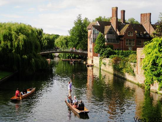 Fulbourn United Kingdom  city photo : Cam River planting Picture of Cambridge, Cambridgeshire ...