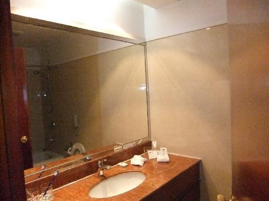 Metropark Hotel Shenzhen: 卫生间