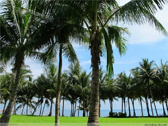 Club Med Bintan Island : 3264546779891678997