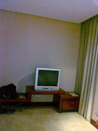 Polka Hotel: 电视