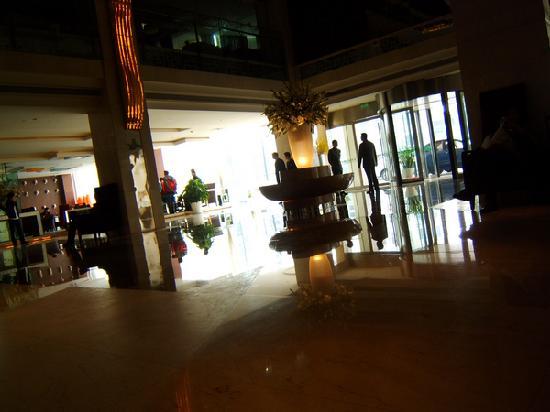 Huachen Kenzo Hotel : 大堂