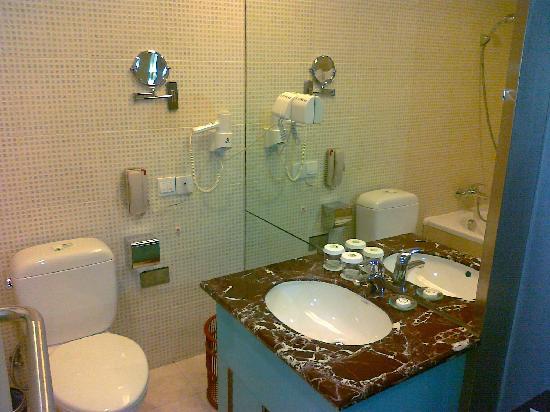 Gui Hu International Hotel : 桂湖国际大酒店--9003标间洗手间