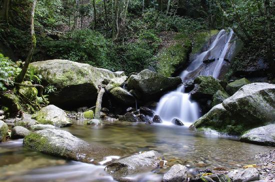 Sabah, Malasia: 小瀑布