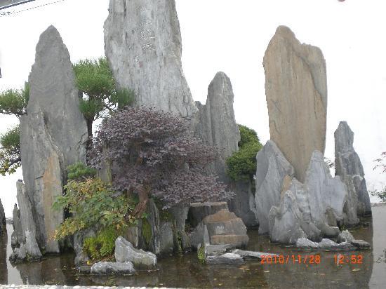 The Baos' Garden: CIMG2538