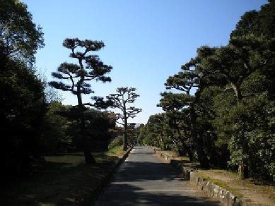 Nara, Japón: 散步道的沿途景色