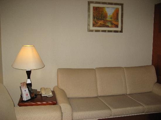 Metropark Hotel Shenzhen: 沙发