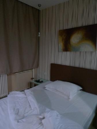 Shanshui Trends Hotel Beijing Liuliqiao: C:\fakepath\P1030334_调整大小