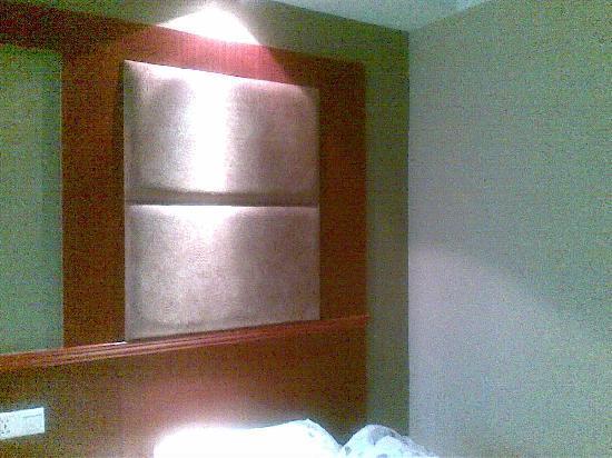 Jiu Long Hotel: 20101130(003)