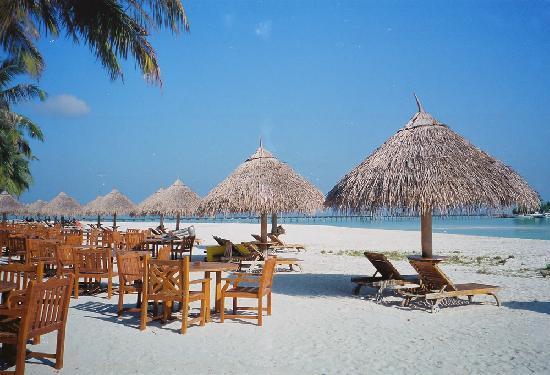 Southern Ari Atoll: 66ed642b307f70cf98250ad4