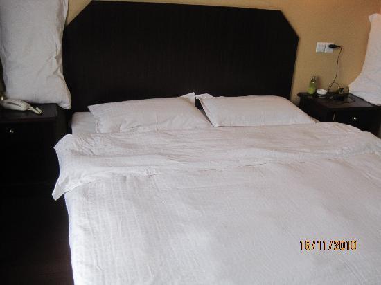 Tingyuan Business Hotel : 房间内部