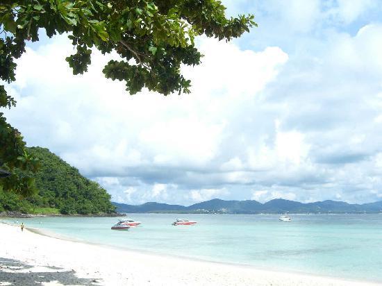 Coral Island: 岸上的景色