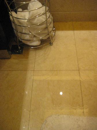 Cixi Landison Plaza Hotel: 慈溪雷迪森908房地漏反水