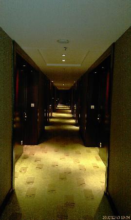 Tian Rui Business Hotel: 走廊