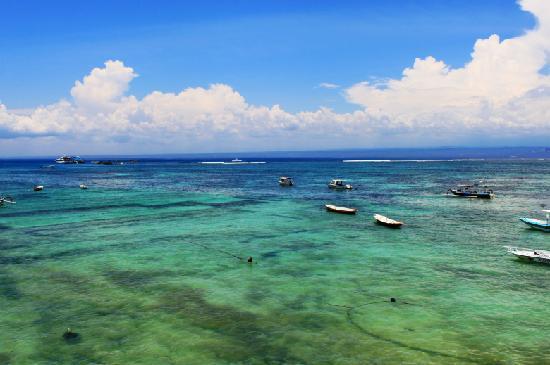 BALI蓝梦岛斑斓的海