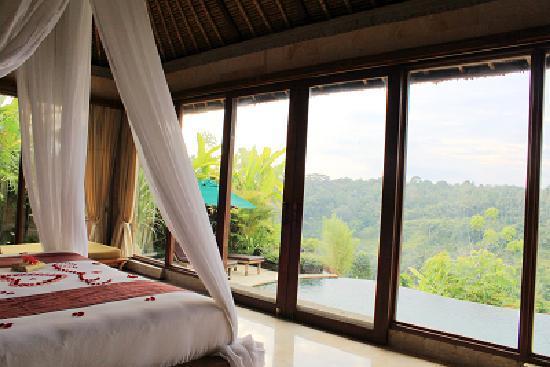 Bali, Indonesia: ROYAL别墅的无敌峡谷风景和无边泳池