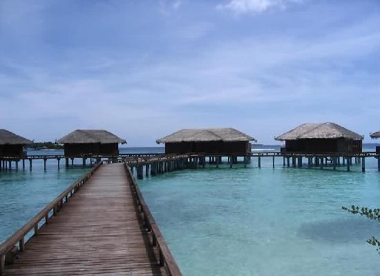 Maldives: 马尔代夫-潜水度假村i