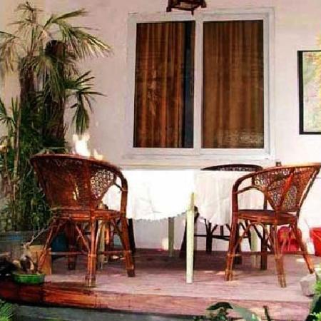 Yulan Tree Guest House: 可以观鱼的饮茶木台
