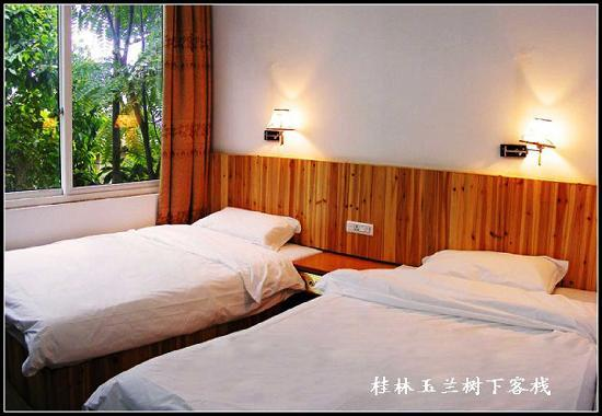 Yulan Tree Guest House: 树影婆娑慵梳头