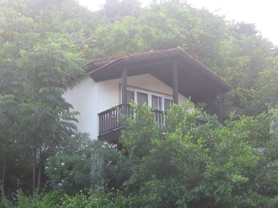 Qidong Hot Spring Resort: 半山别墅
