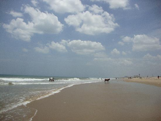 Chennai (Madras), India: 海滩