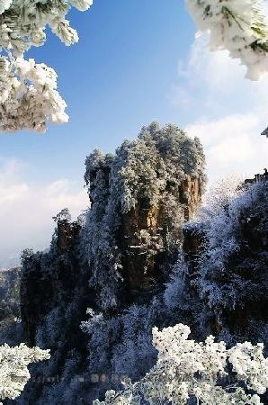 Tianzi Mountain : 1