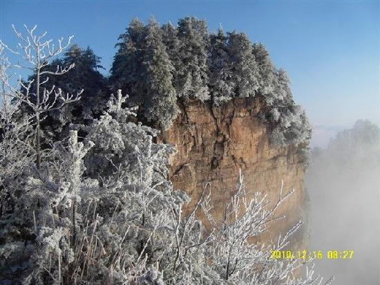 Tianzi Mountain : 3
